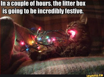 festive kitty box